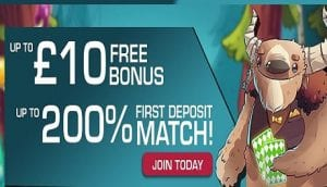 no deposit casino signup bonus